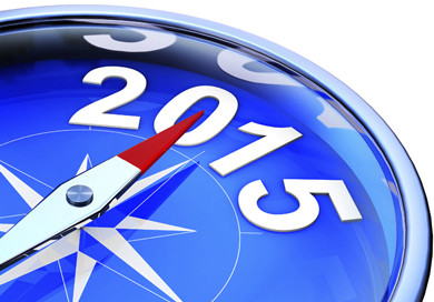 Make 2015 the most profitable year