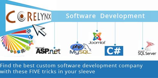 custom software development company
